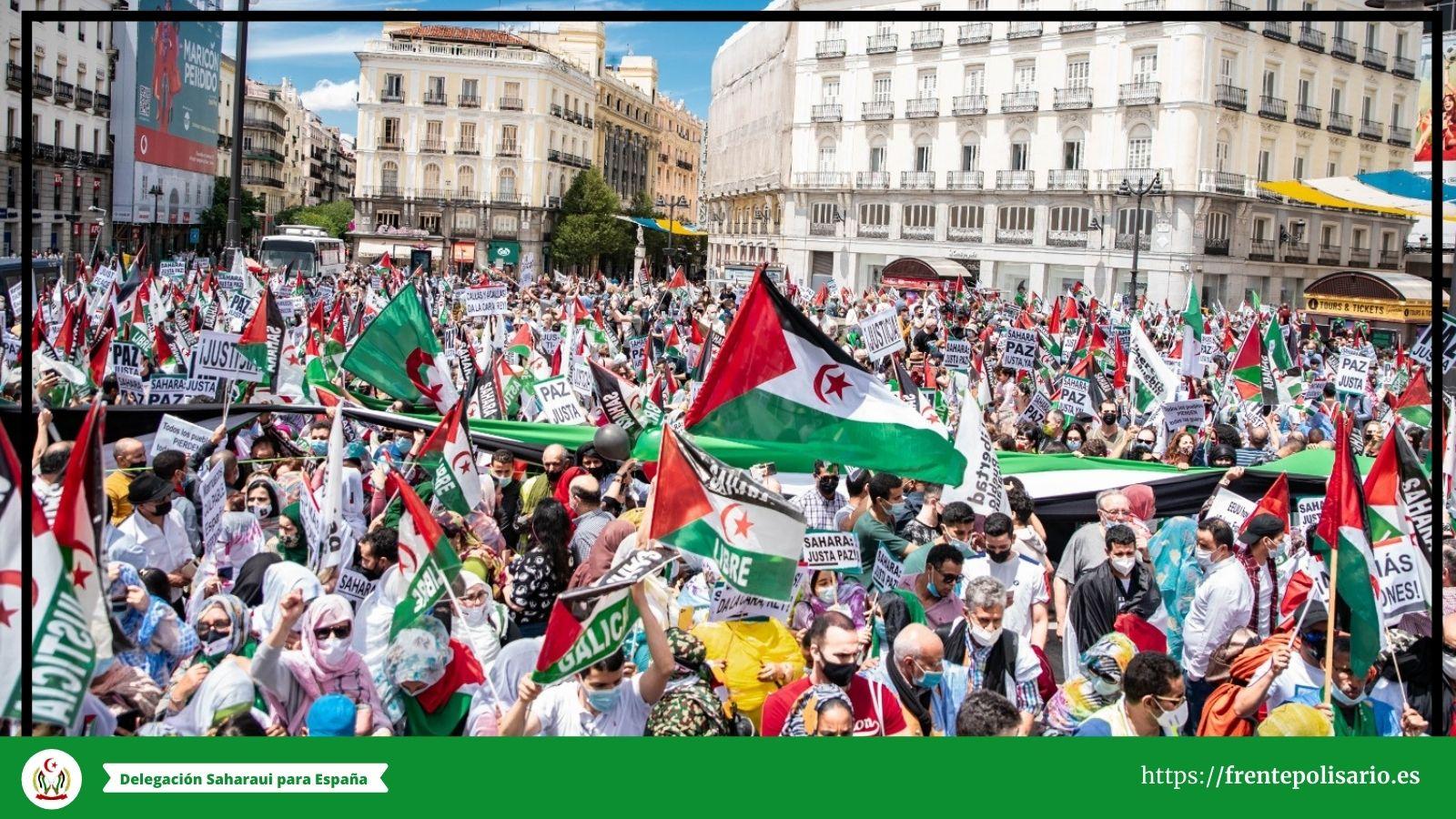 """La histórica marcha por la libertad del pueblo saharaui demuestra """"el hartazgo"""" ante la injusticia en el Sahara Occidental"""