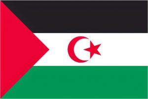 Historia de la República Saharaui